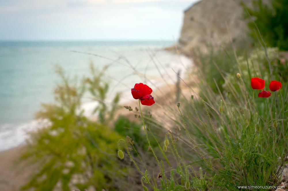фотосесия в thracian cliffs