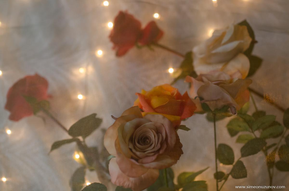 романтична фотосесия варна